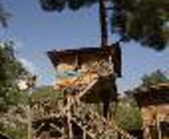 Kadir's Top Tree House