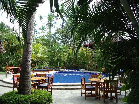 Tambor Tropical Beach Resort: the paradise