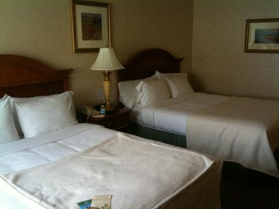 Roman Spa Hot Springs Resort: Clean comfortable beds and a cozy room-check out the plump pillows!