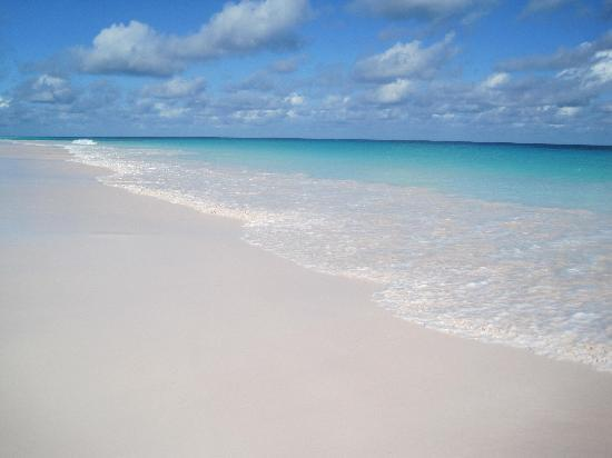 A beautiful get away pink sands pictures tripadvisor for Pink sands harbour island bahamas