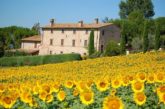Agriturismo Casale dei Frontini