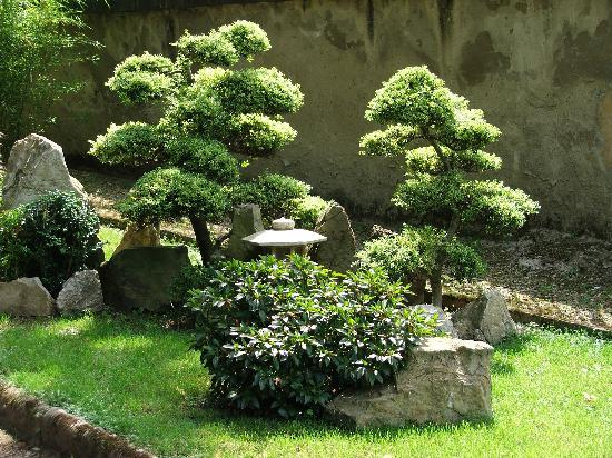 A tiny japanese garden in florence picture of botanical for Small japanese gardens pictures