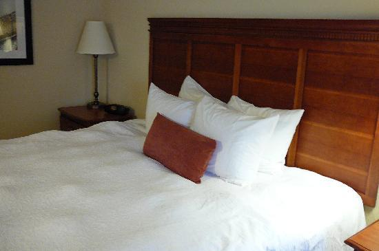 Hampton Inn & Suites Knoxville - Downtown: bed
