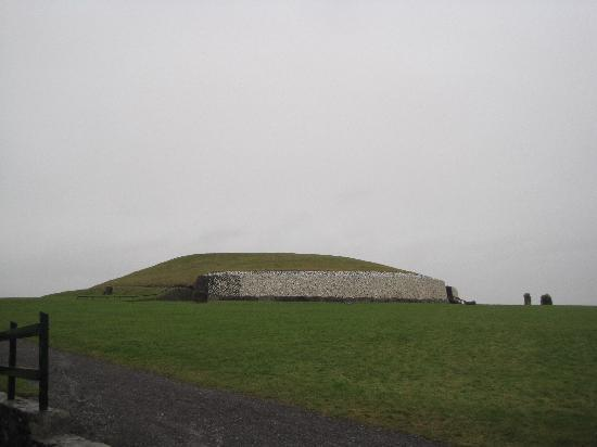cioll newgrange woodcollection