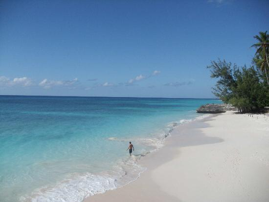 Christ Church, Barbados: Picture perfect view of the beach.