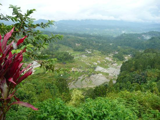 Rantepao, Indonesien: The beautiful Toraja Land
