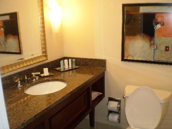 Ontario International Airport Hotel: Bath