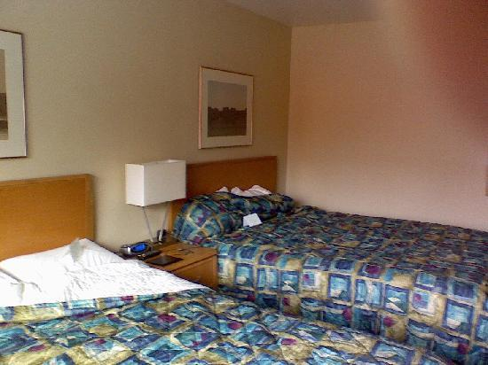 University Inn - A Piece of Pineapple Hospitality: Room 2