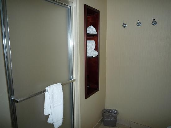 Hampton Inn &amp; Suites Berkshires: The bathroom