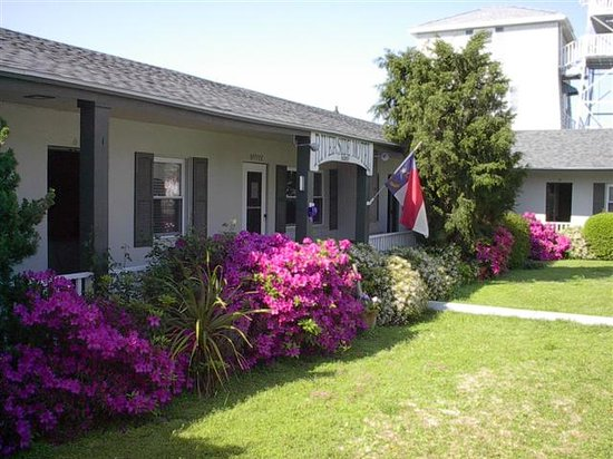 Southport, Caroline du Nord : Riverside Motel Blooms 