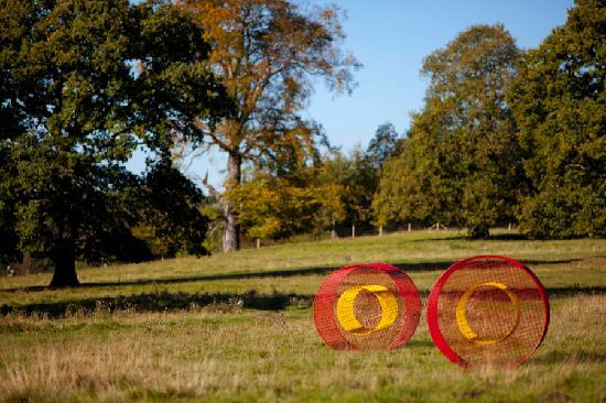Summer Fields, Helen Escobedo, 2008. Photo Jonty Wilde. By YSPsculpture