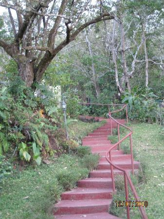 Amatierra Retreat and Wellness Center: path to rooms