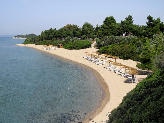 Photo of Trikorfo Beach Hotel Sithonia