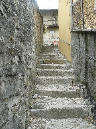 Feltre