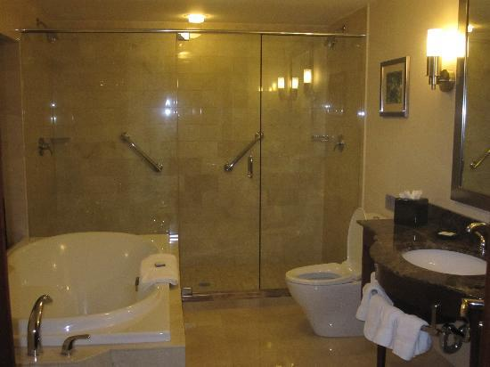 Viana Hotel and Spa: bathroom