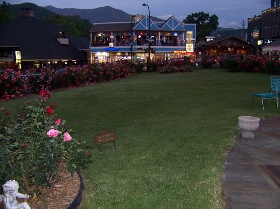 Gatlinburg Inn: The rose garden and right on the strip. CAN`T BEAT THE LOCATION!!!