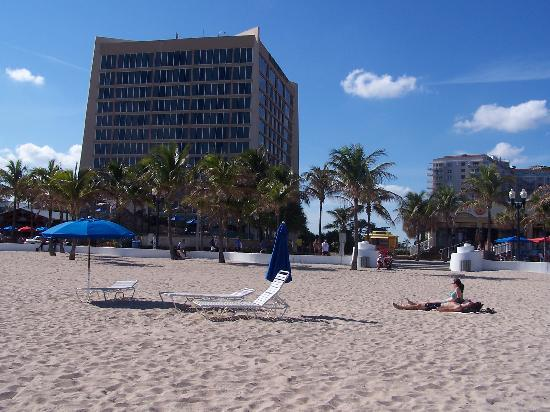 playa picture of courtyard by marriott fort lauderdale. Black Bedroom Furniture Sets. Home Design Ideas
