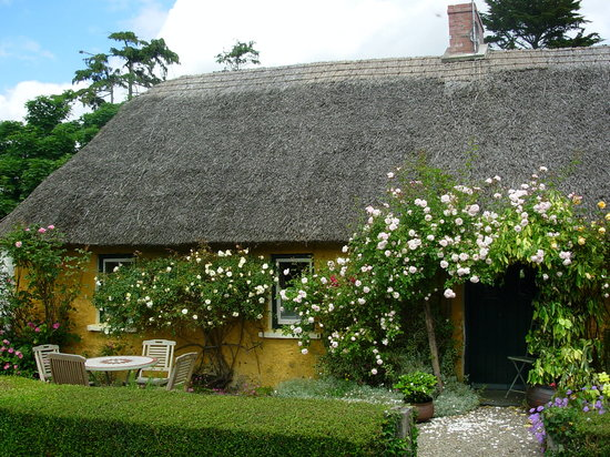 , : The rear of the cottage