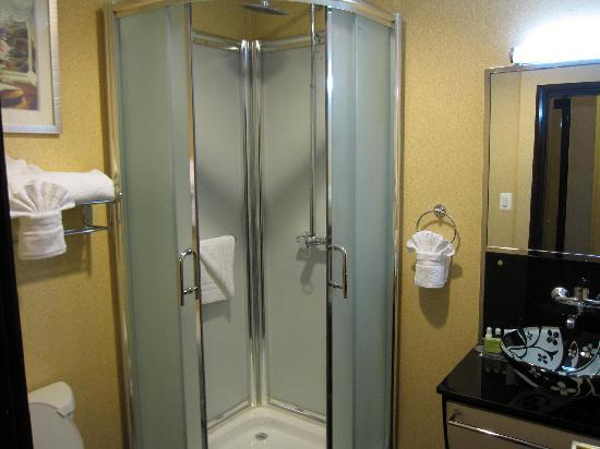 BEST WESTERN Plus Envy Hotel: Guest Bathroom