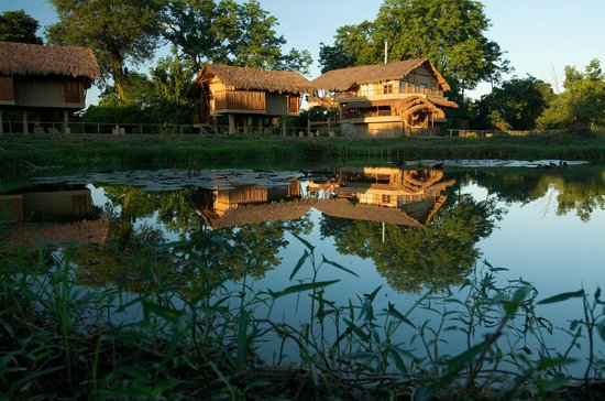 ‪Diphlu River Lodge‬