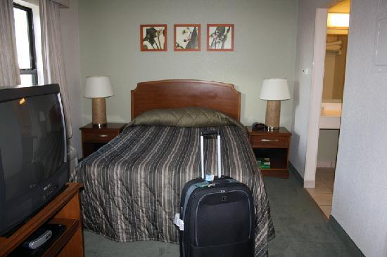Extended Stay America - Orlando - Maitland - Pembrook Drive: Bett