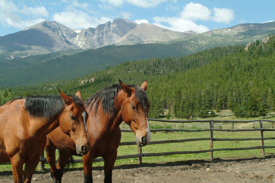 Photo of Wind River Christian Family Dude Ranch Estes Park
