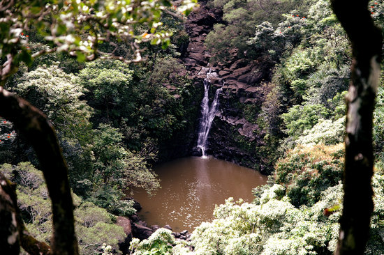Haiku, : Falss on the way to Hana