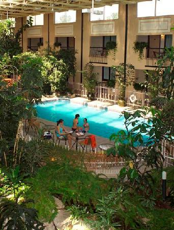 Jardin Tropical Int Rieur Picture Of Hotel L 39 Oiseliere Montmagny Montmagny Tripadvisor