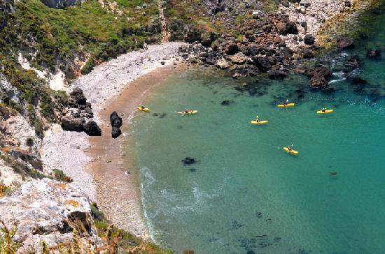 Channel Islands Np Tours