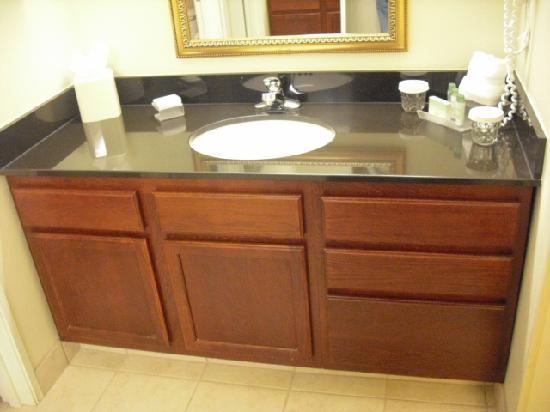 Homewood Suites by Hilton Columbus / Dublin: Vanity