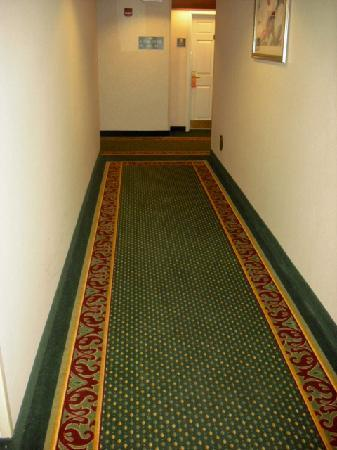 Homewood Suites by Hilton Columbus / Dublin: 1st floor hallway