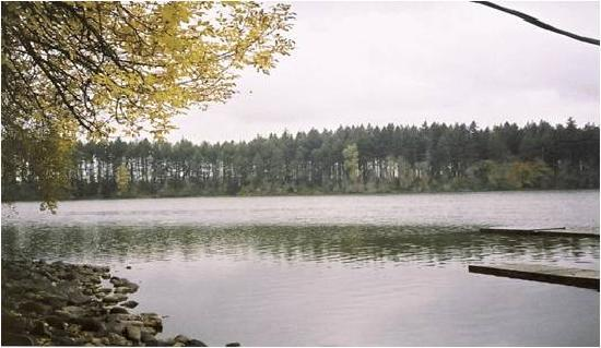Offut Lake Resort: A view of Offut Lake