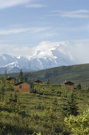 Camp Denali: Cabins are situated to make the most of Mt. McKinley views