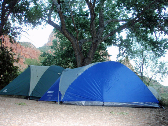 Watchman Campground: Trees provided great shade