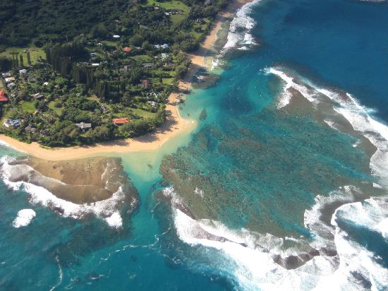 View Of Ke39e Beach From The Helicopter  Picture Of Mauna Loa Helicopters