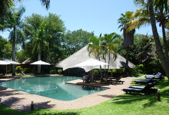 Photo of Sefapane Lodge and Safaris Phalaborwa