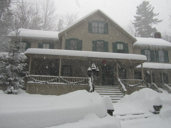 Snow Goose Bed and Breakfast : Snowy Beauty 
