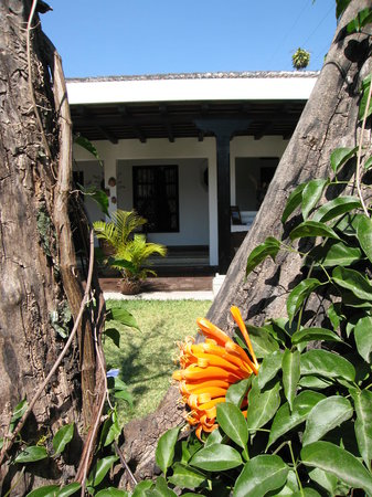 Hotel la Casa de Don Pedro