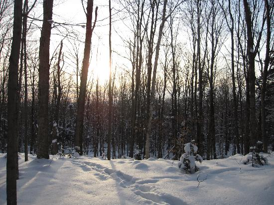 Le Domaine Tomali-Maniatyn: On our snowshoeing excursion.