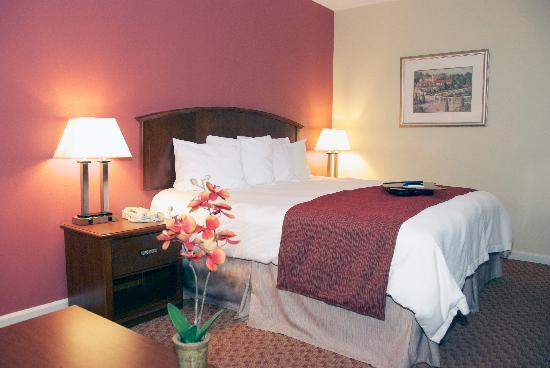 BEST WESTERN Hickory: Well-appointed King room