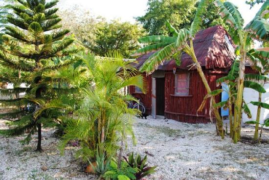 Calm Cabins Tulum: private mayan style cabin