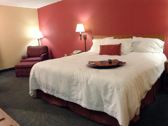 Hampton Inn Mobile I-10/Bellingrath Gardens: Luxurious King Beds are great at the end of a long day