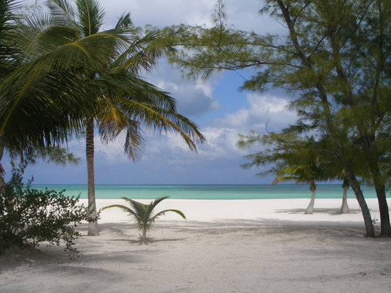 Cozumel, Mexico: Picture I took of the beach