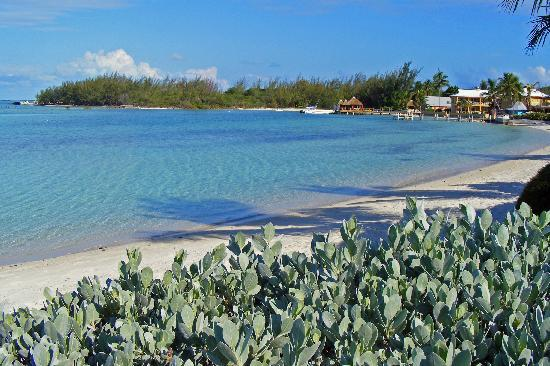 George Town, Great Exuma: view from doorstep