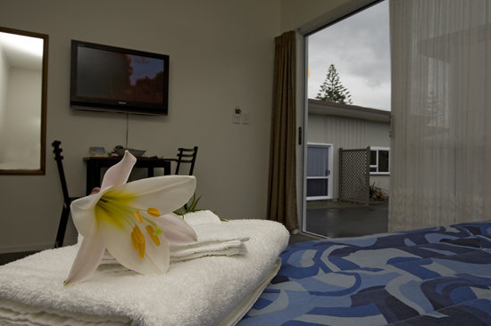Econo Lodge Napier: Modern Studio Suite