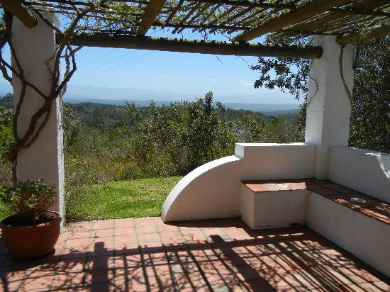 Fynbos Ridge Country House & Cottages: Gazania patio view
