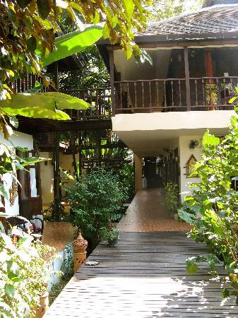 Saraphi, Thailand: Beautiful wooded surrounds