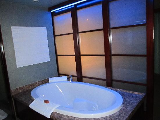 Shade Hotel: tub with changable lighting