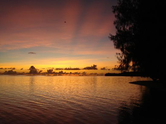 Carp Island Resort: sunset on carp