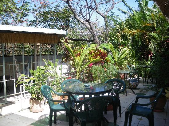 """The patio a great place for flowers birds and """"happy"""